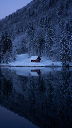 Lake Forest Snow Cabin IPhone Wallpaper - IPhone Wallpapers