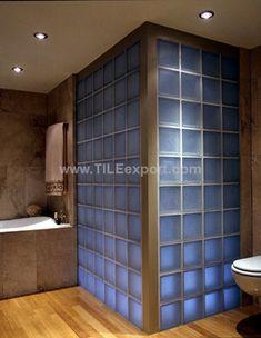 Fresh Glass Blocks Bathroom Designs