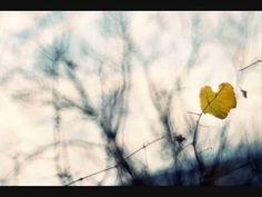 Hana a Petr Ulrychovi ~ Zvláštní znamení - YouTube Petra, Dandelion, Music, Flowers, Youtube, Plants, Musica, Musik, Dandelions
