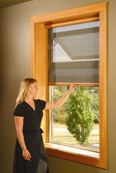 Window and door styles on pinterest craftsman exterior for Windows with retractable screens