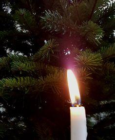 Adventti aloittaa joulunajan