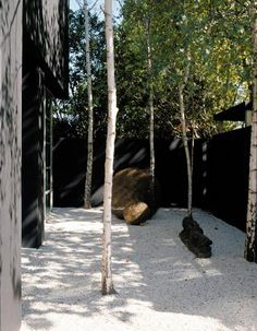 elements of nature set in place in a courtyard in a punctual way