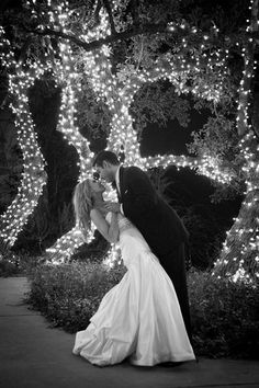 String lights wrapped around the trunk of trees creates and elegant backdrop for photos or a dance floor.