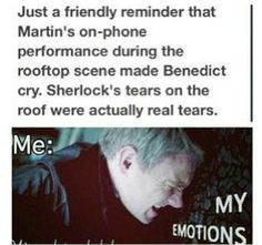 the feels (Sherlock fandom I'm just gonna give you a hug now *hugs* Season 3 will come, don't worry. Sherlock Bbc, Sherlock Fandom, The Mentalist, Johnlock, Doctor Strange, Doctor Who, Narnia, Steven Universe, My Emotions