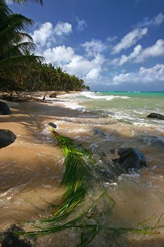 Nicaragua, Little Corn Island - 9 islands to disconnect and escape and overstimulated world
