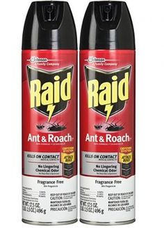 Raid Ant and Roach Insecticide Killer Spray Ant Killers, Roach Killer, Buyers Guide, Ants, Top, Ant, Crop Shirt, Shirts