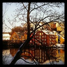 Instagram photo by @Britt-Arnhild Lindland via ink361.com