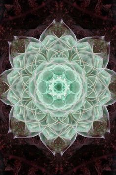Wow, I had something similar to this appear in a recurring dream I used to have. The center couple of sections spun around and floated up slowly. they were waxy in texture and illuminated from within.  namobuddhaya:       Anahata