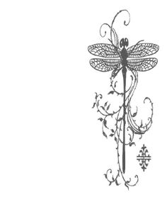 dragonfly halfpage
