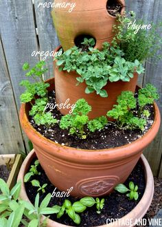 COTTAGE AND VINE An Herb Tower Update