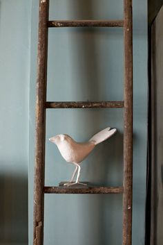 paper mache bird on a ladder. nice image.