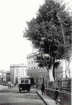 Calle Santo Domingo, Teatro Guimerá, Santa Cruz de Tenerife 1916.  https://es.pinterest.com/pin/392868767476360490/