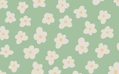 spring daisy background