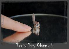 Chipmunk+Handmade+Miniature+Sculpture+by+ReveMiniatures.deviantart.com+on+@deviantART