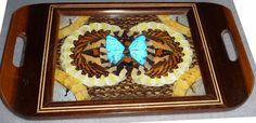 http://www.bonanza.com/listings/Butterfly-Wing-Tray/21498726 200. dollars