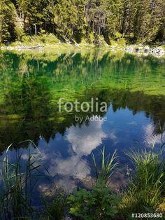 """""""Spiegelung in einem kleinen See an der Nordseite des Eibsees"""""""
