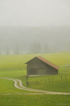 Barn In The Misty Morning.looks like country life. Country Barns, Old Barns, Country Life, Country Roads, Country Living, Barns Sheds, Farm Barn, Country Scenes, Farms Living