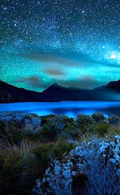 beautiful blue starry sky