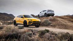 Different colors same DNA. Lamborghini, Luxury Cars, Different Colors, Super Cars, New Experience, Dna, Instagram Posts, Sports, Image