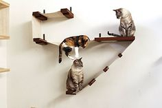 Amazon.com : CatastrophiCreations Deluxe Cat Playplace - Cat Hammock & Climbing Activity Center - Handcrafted wall-mounted cat tree : Pet Supplies