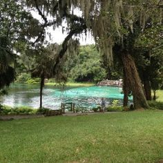 Rainbow river state park, Dunnellon, FL