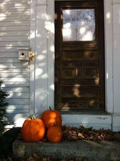 Tres pumpkins Pinterest • The world's catalog of ideas https://www.pinterest.com