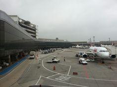 Aeroporto de Guarulhos. Essa magnífica cidade aeroportuária da qual faço parte.
