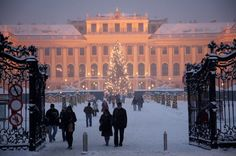Even on a frosty winter's evening the entrance to Schönbrunn Palace in Vienna is full of charm