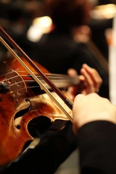 The Violinists Point Of View From Back Orchestra