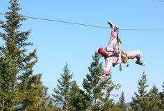 Oyama Zipline Forest Adventure Zipline Adventure, Forest Adventure, Things To Do In Kelowna, Ground School, Parking Design, Adventure Activities, Lake View, Stuff To Do, Tourism