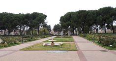 Información sobre rosaledas del mundo: http://www.elhogarnatural.com/reportajes/Rosaleda.htm