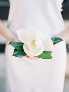 One simple magnolia...so very Southern!