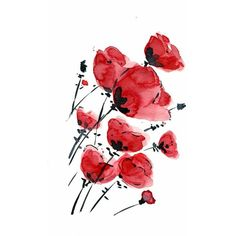 Poppies field on a windy day print of original watercolor painting... ❤ liked on Polyvore featuring flowers, backgrounds, fillers, decoration, art, effects, doodles, quotes, text and phrase