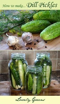 Dill Pickle Recipe for crunchy Dill Pickles ~ easy to make and delicious!Recipe for crunchy Dill Pickles ~ easy to make and delicious! Canning Pickles, Canning Tips, Home Canning, Canning Recipes, Claussen Pickles, Do It Yourself Food, Canned Food Storage, Fermented Foods, Dose