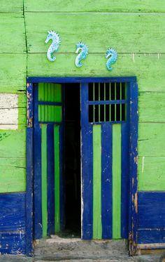 Rio Lagartos, Yucatan When One Door Closes, Door Entryway, House Doors, Grand Entrance, Old Doors, Painted Doors, Door Knockers, Garden Gates, Closed Doors