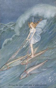 "oldchildrensbooks: "" Elves and Fairies Series N° 73 Vintage postcard. From ""Bunny and Brownie "" by Ida Rentoul Outhwaite. A. & C. Black Ltd. London. .c.1930. Driving the others with reins of pink sea-weed """