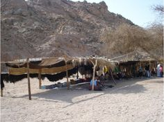 Bedouin tent in desert Place for camels to rest