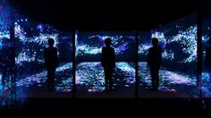 teamLab - Between Art and Physical Space — T H E •• T W O