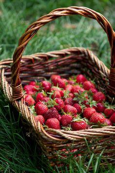 #frutosrojos #antioxidante natural #farmaconfianza