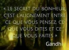 Positive Mind, Positive Attitude, Positive Quotes, Wisdom Quotes, Words Quotes, Life Quotes, Gandhi, Cute Sentences, Quote Citation