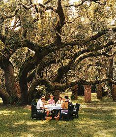 Cumberland Island, GA. -   Top 10 Islands in the U.S. : Condé Nast Traveler