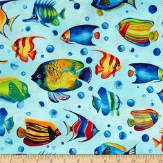 Tropical Reef Large Fish Ocean