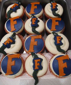 Florida Gators cupcakes