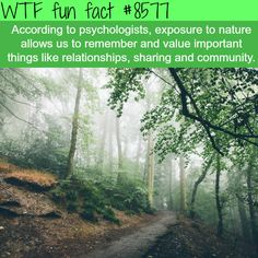 20 WTF FACTS IN YOUR FACE THAT WILL FRY YOUR BRAIN  More From Chaostrophic 20 'DID YOU KNOW' FACTS …
