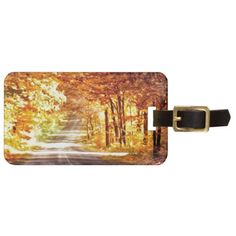 Interchange of Light and Colour Luggage Tags