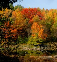 Easton Mountain in autumn. Harvest Gay Spirit Camp is November 1-3, 2013! http://eastonmountain.org/harvest-gay-spirit-camp/