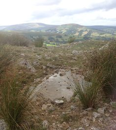 Sheep water  Brecon