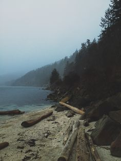 Teddybear Cove, Bellingham, WA