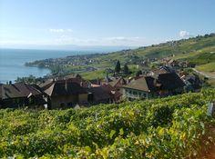 Switzerland - Lake Geneva - Laveau - A UNESCO World Heritage Site. The Lavaux vineyards illustrates a thousand years of labour.   #Switzerland