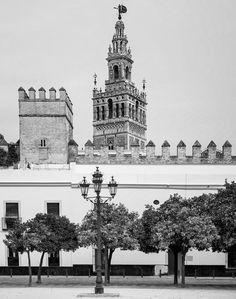 Drying Laundry, Seville Cathedral, 2016. nigrumetalbum.com instagram.com/sashleyphotos